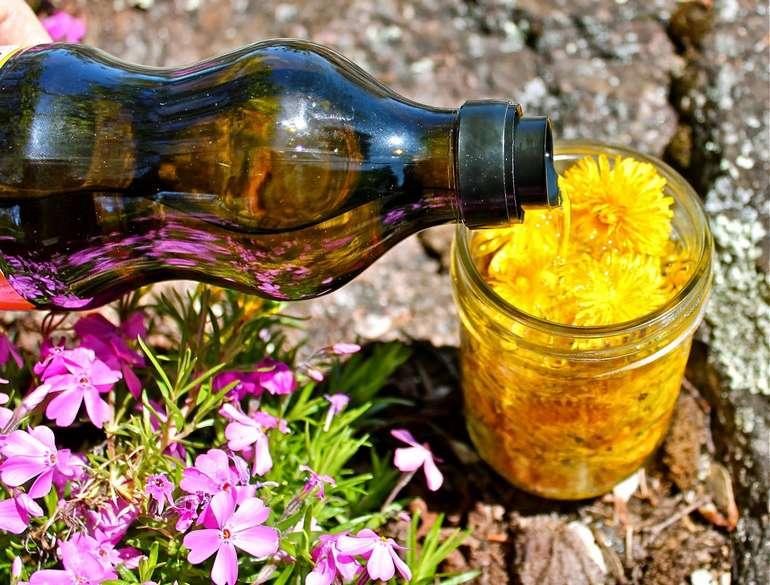 Рецепт приготовления масла из одуванчиков
