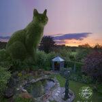 Это волшебное место, где деревья и кусты превратились в гигантских котов… Просто сказка!