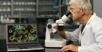 Неутешительные прогнозы генетиков
