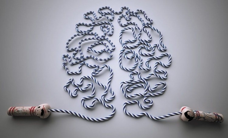 головной мозг