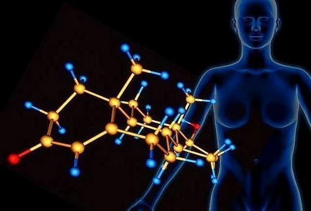 Где живут разные гормоны и зачем они нам нужны