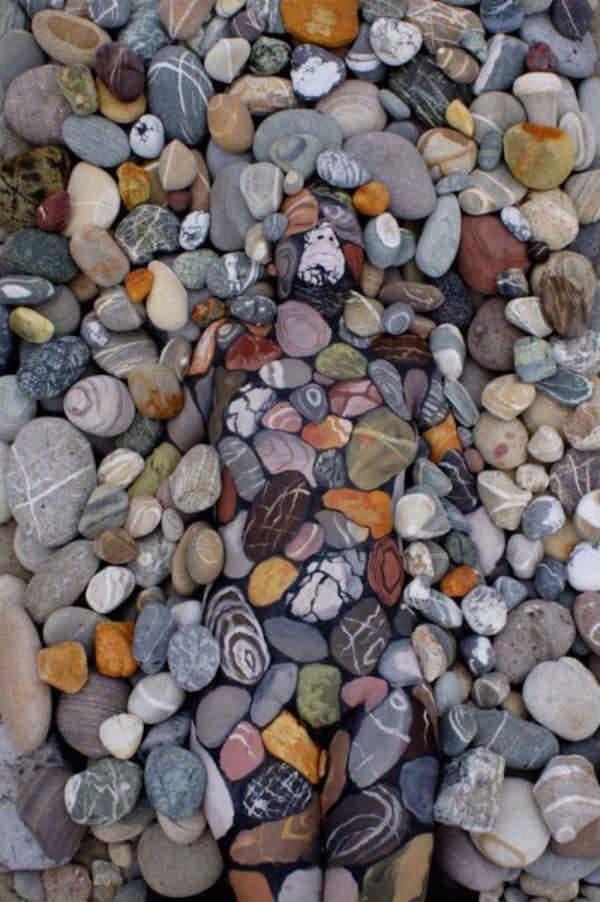 Ты видишь волка или человека? А сколько человек ты здесь видишь?