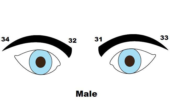 Что брови могут рассказать о характере мужчины!