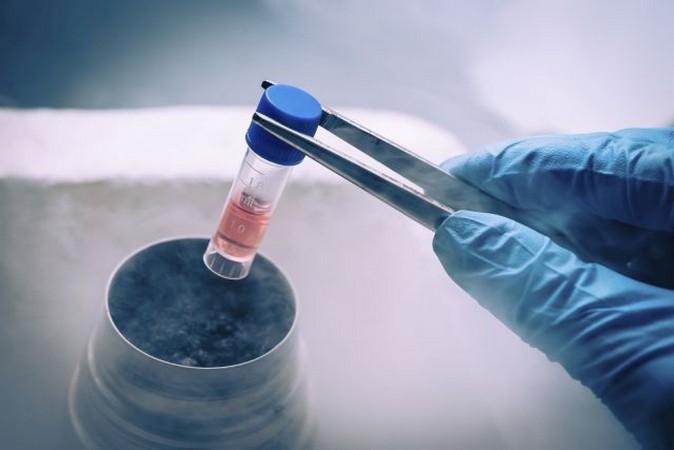 Погоня за вечной молодостью: звезды умирают от лечения стволовыми клетками?