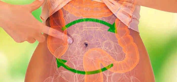 Мягкая очистка кишечника семенами льна: удаляем все вредное, худеем и оздоравливаемся!