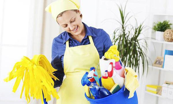 Мечтаете о домработнице? Напрасно! Оставьте радость от уборки для себя