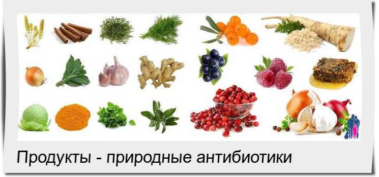 ТОП природных антибиотиков